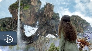 Pandora - The World of Avatar | Disney's Animal Kingdom