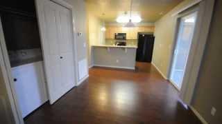 Apartments - Floor-Plan C