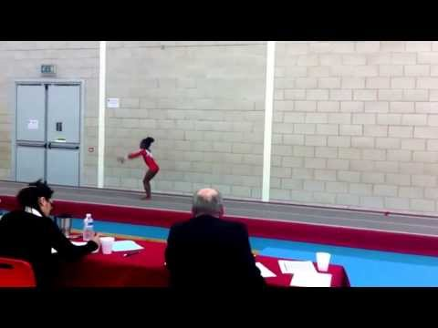 City of Birmingham Tumblers - West Midlands Club Grades 2013