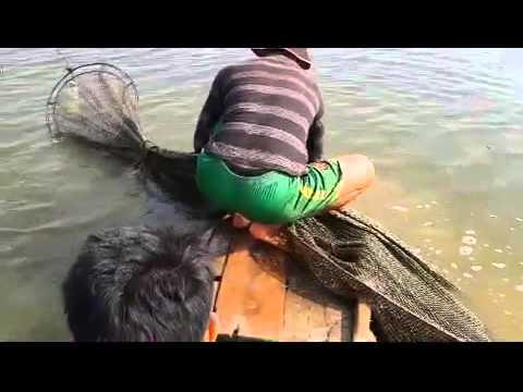 рыбная ловля и любовь