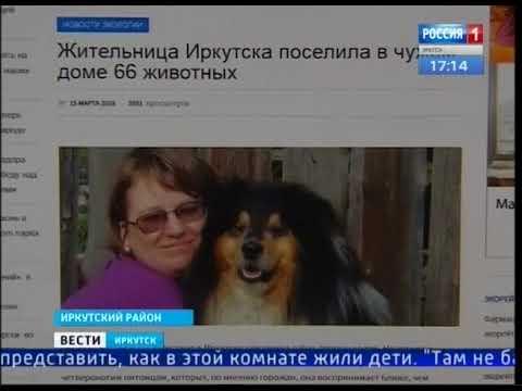 Экскременты вперемешку с вещами. В Иркутском р-не женщина арендовала дом и поселила туда свору собак