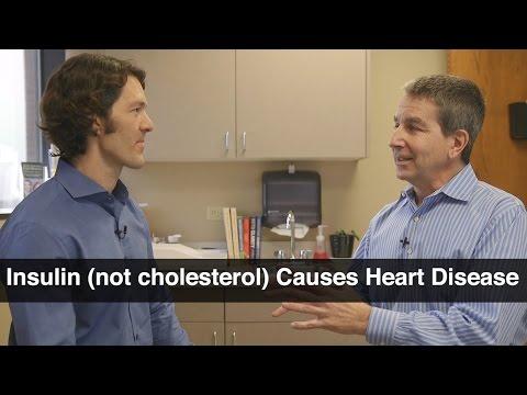 Insulin Resistance Not Cholesterol Causes Heart Disease - Jeffry Gerber, MD