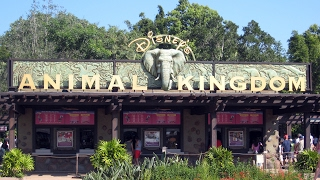 Disney's Animal Kingdom - Walt Disney World Florida