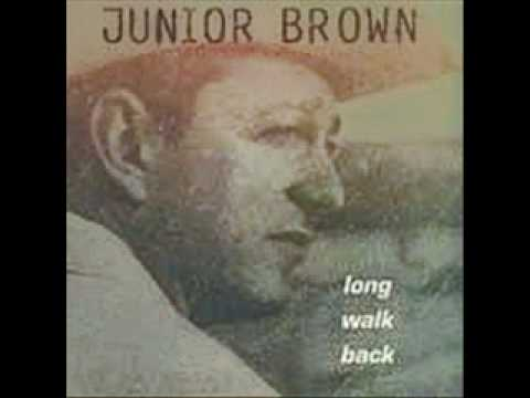 Stupid Blues - Junior Brown