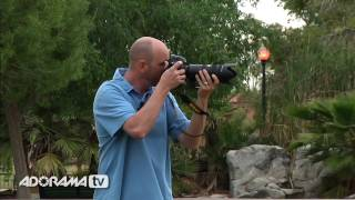 Digital Photography 1 on 1: Episode 15: Panning: Adorama Photography TV