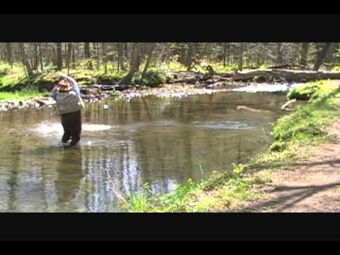 Pennsylvania fly fishing little sandy creek part for Pa out of state fishing license