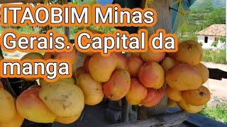 ITAOBIM. Minas Gerais. Capital da manga