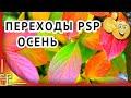 Бесплатно переходы для ProShow Producer Осень mp3