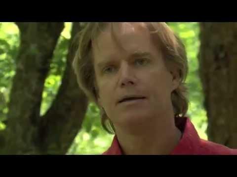 Survival Skills - Wild Edible Plants - Earth School