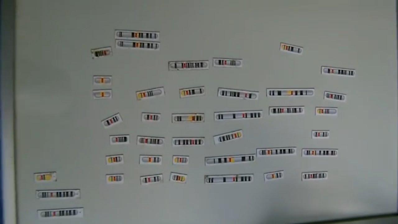 YHRD  YChromosome STR Haplotype Reference Database