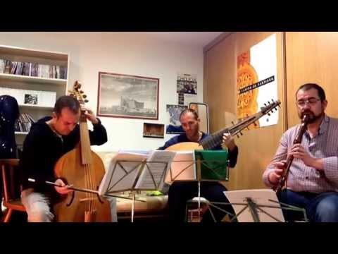 Ernst Gottlieb Baron - Concerto In Dm 2 Allegro