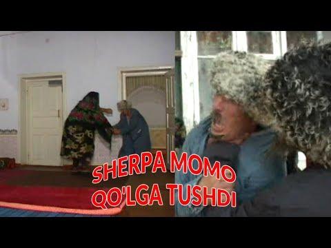 Sherpa Momo Xiyonat ustida qo'lga tushdi