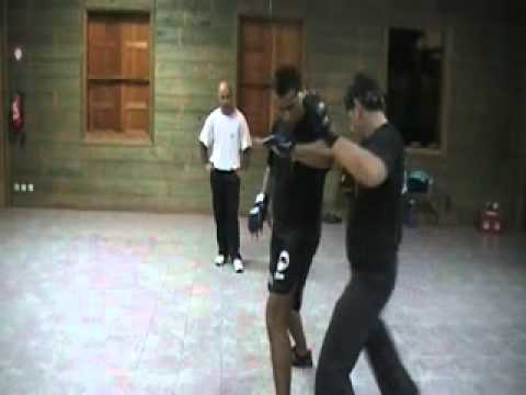 Jeet Kune Do counter attack on kicks Image 1