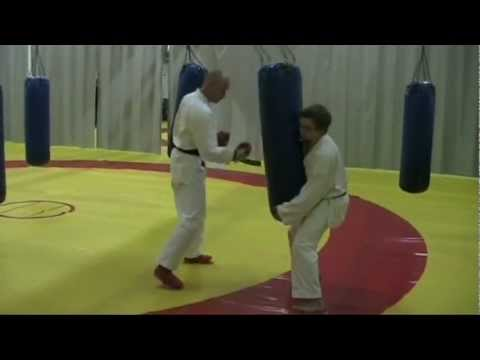 Accelerating power punch workout. 武道 - demo by Oulu shukokai karate, Finland Image 1