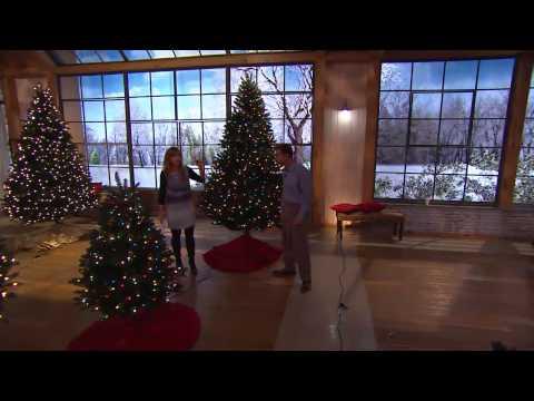 Bethlehem Lights 9' Upswept Douglas Fir Tree with Nancy Hornback
