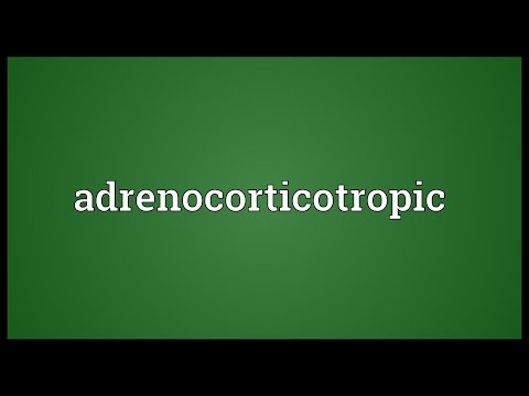 Header of adrenocorticotropic