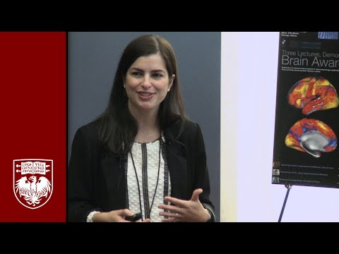 Genevieve Konopka: Conte Center's Brain  Awareness Day - Autism & Cognition