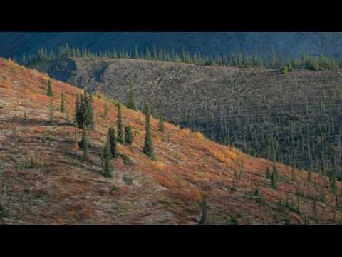 Dempster Highway and Tombstone Territorial Park (Part 9: Angel Comb Mountain)