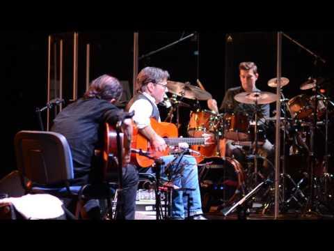 Fragment Koncertu Al Di Meola W Katowicach, 12.05.2017