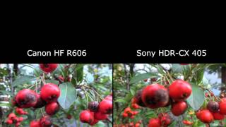 Test kamer Canon Legria HF R606 versus Sony HDR-CX 505