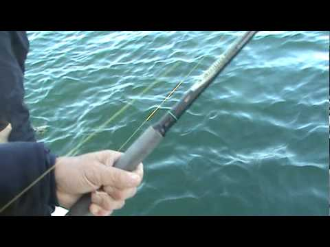 2010 Halibut Fishing Charter off Victoria B.C.