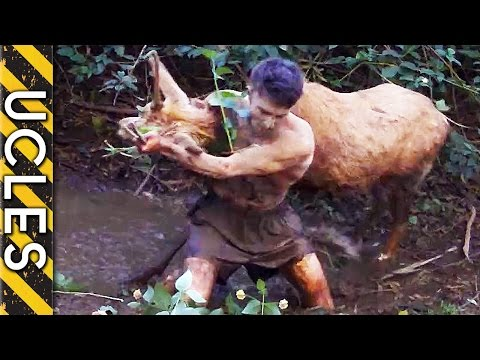 Wild Animals Caught Barehanded video