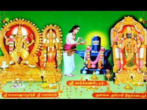 Sagala Selvangalum Tharum