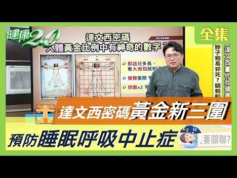 台灣-健康2.0-20200915 達文西的畫暗藏密碼 體型與疾病之間有重要關聯?