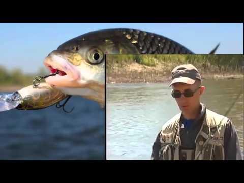 рыбалка весной на кольцо