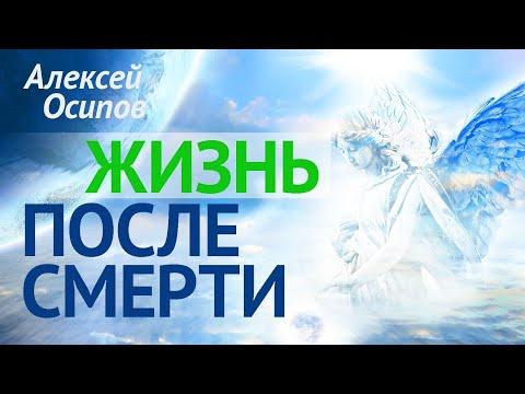 Как живёт душа после смерти? (ТК «Спас», 2017.04.27) — Осипов А.И.