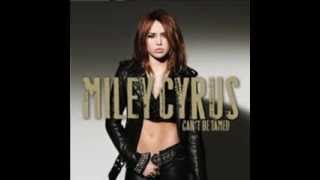 Watch Miley Cyrus Every Rose Has Its Thorn video