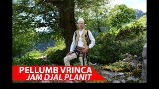 Download Lagu Pellumb Vrinca -Jam Djal Planit ( Official Video 4K) Gratis STAFABAND