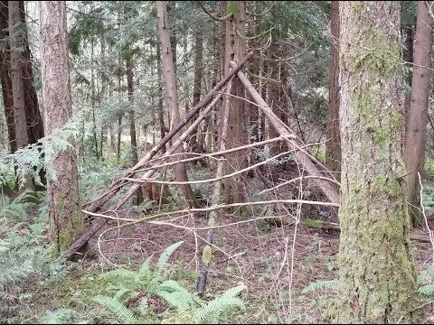 More Bigfoot Tree Structures Found. Sasquatch Evidence? 2-28-2019