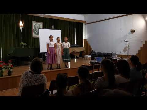 A Nyitnikék együttes fellépése