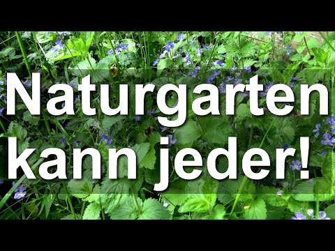 Naturgarten Kann Jeder - Artenvielfalt Natur, Garten, Wiese, Bienen, Hummeln - Mielkendorf Bei Kiel