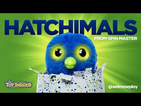 Everything You Need to Know About #Hatchimals | A Toy Insider Play by Play