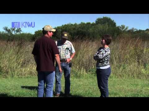 Clarks Creek WRAPS - KTWU's