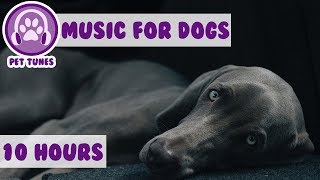 Relax My Dog in my House - Music For Dogs, Puppy Sleeping Lullabies  - Helped 2 million dogs already  from PetTunes - Music for Pets