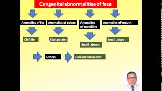 Magdy Said Anatomy Series,pharyngeal arches,5-development of nasal cavity and palate