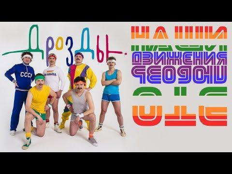 """ДРОЗДЫ """"Наши движения - это любовь"""" (премьера клипа 2018)"""