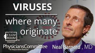 Neal Barnard, MD | Where Many Viruses Originate