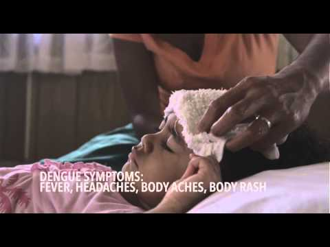 DENGUE FEVER: Symptoms and treatment of Dengue Fever