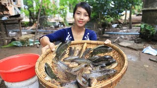 Yummy cooking fresh fish recipe - Cooking skill