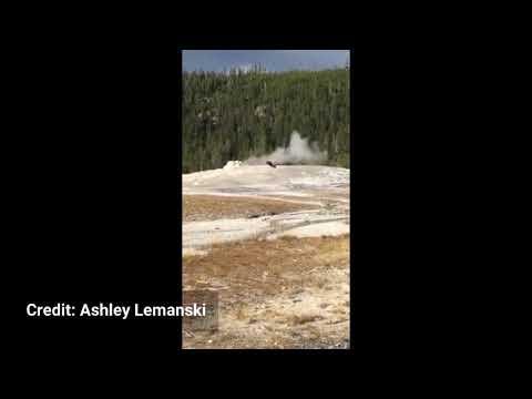 Man walks on Old Faithful in Yellowstone National Park video 1080p