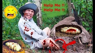 Đi Bắt Mối Chúa Khổng Lồ .Suýt Mất Mạng Trong Rừng Sâu .Thử Thách Nuốt Mối Chúa .Catch Termite Queen