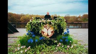 100 Days until Tomorrowland   Paul Kalkbrenner - LIVE