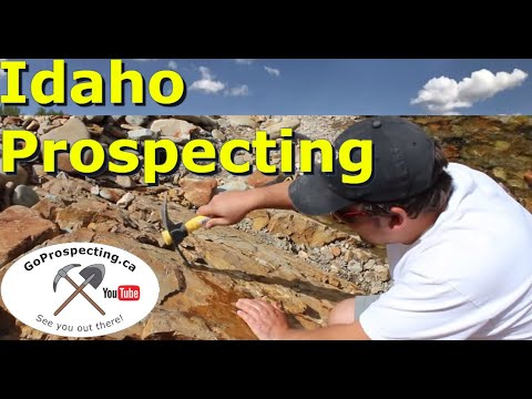 Gold Prospecting in Idaho Eagle City Park Park August 2015
