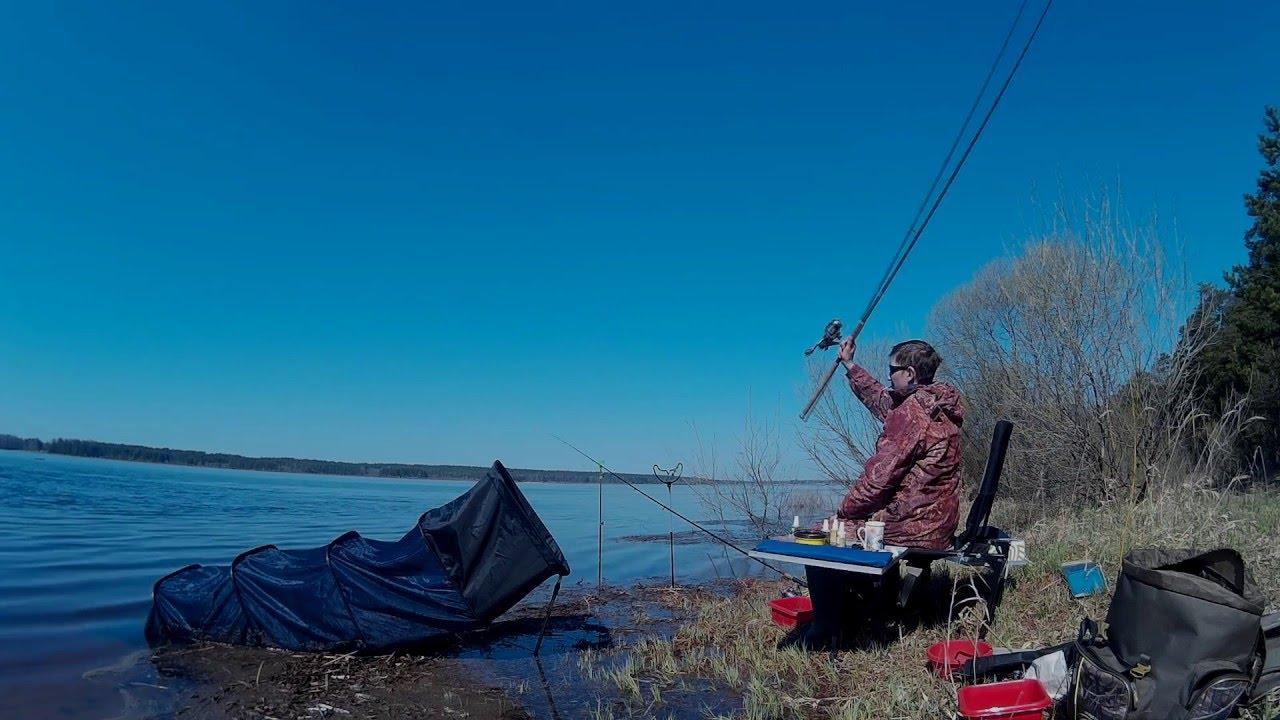 рыбалка весной на фидер на волге