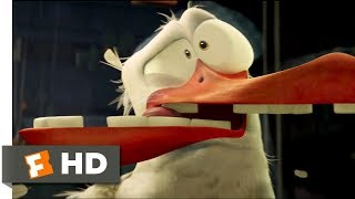 Storks (2016) - Birds Can't See Glass Scene (7/10) | Movieclips