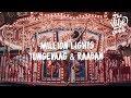 Tungevaag & Raaban - Million Lights (Lyrics)